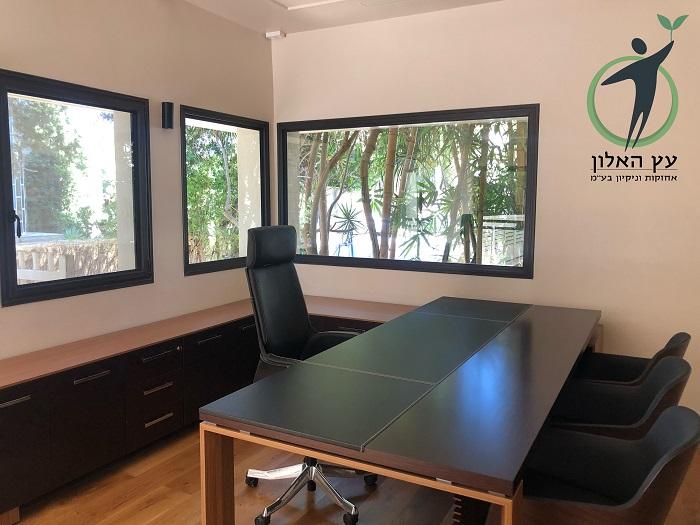 ניקיון_משרד בקיסריה עם עץ האלון